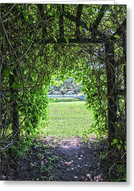 Walkway From Greenhouse Greeting Card