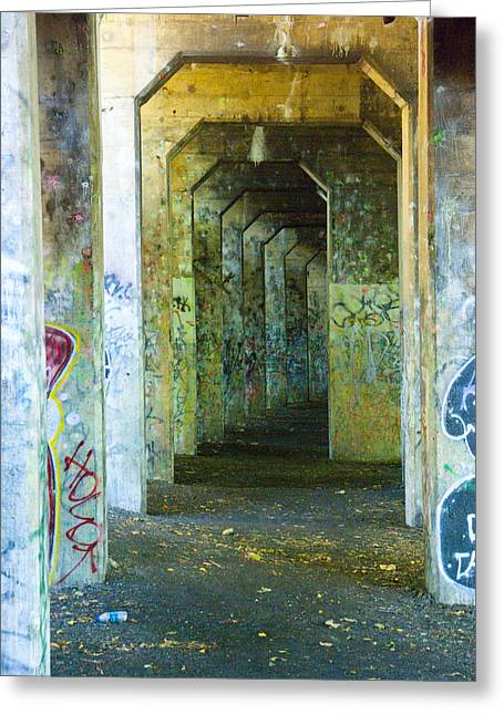 Walkway To Insanity Greeting Card by Timothy Hedges