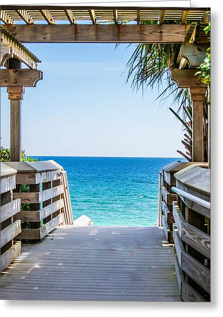 Walkway To Paradise Greeting Card by Shelby  Young