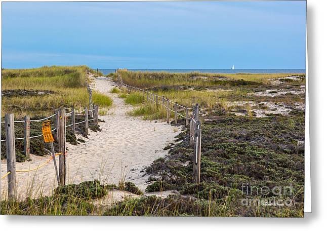 Walkway To The Beach Greeting Card by Michelle Wiarda