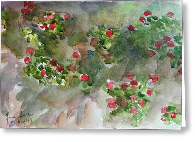Wall Flowers Greeting Card by Janet Butler