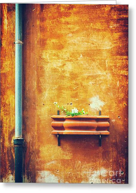 Greeting Card featuring the photograph Wall Gutter Vase by Silvia Ganora