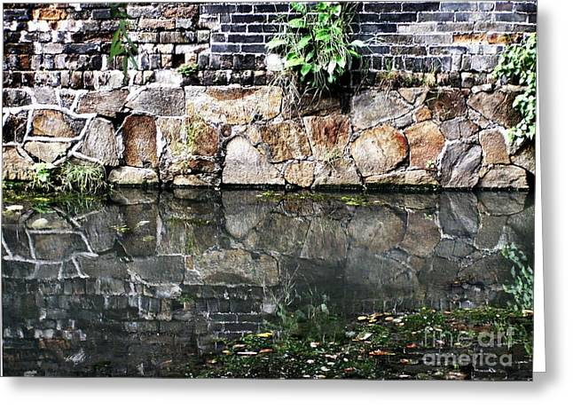 Wall Reflection Greeting Card by Kathy Daxon