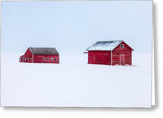 Walled In White Greeting Card by Todd Klassy