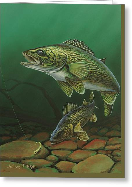 Walleye Greeting Card