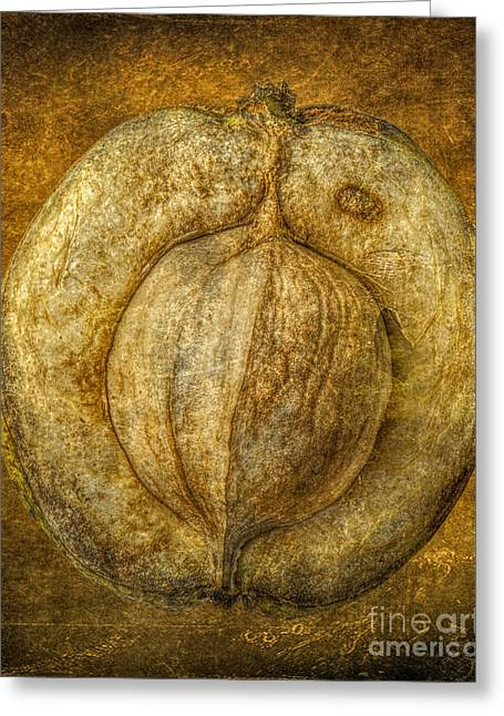Walnut Texture Macro Stil Life Greeting Card by Randy Steele
