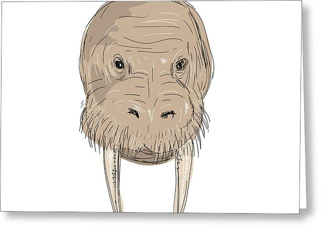 Walrus Head Drawing Greeting Card