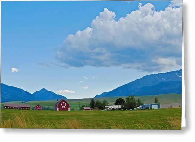 Walter Brennan Rockin Ok Ranch Greeting Card by Alvin Kroon