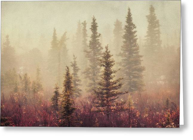Wander In The Fog Greeting Card