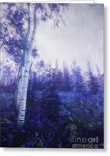 Wander Through The Foggy Forest Greeting Card