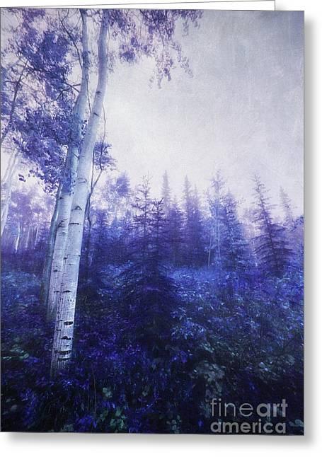Wander Through The Foggy Forest Greeting Card by Priska Wettstein