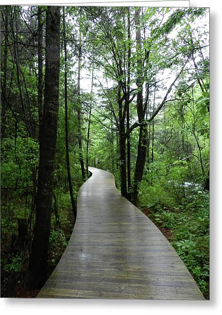 Wang Lang Nature Reserve, China Greeting Card