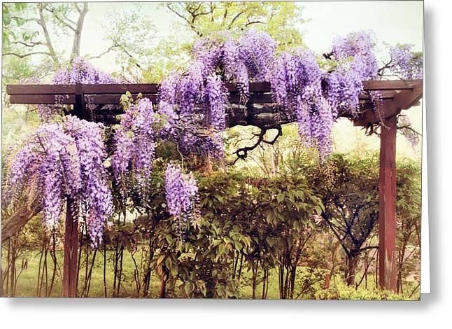 Waning Wisteria Greeting Card