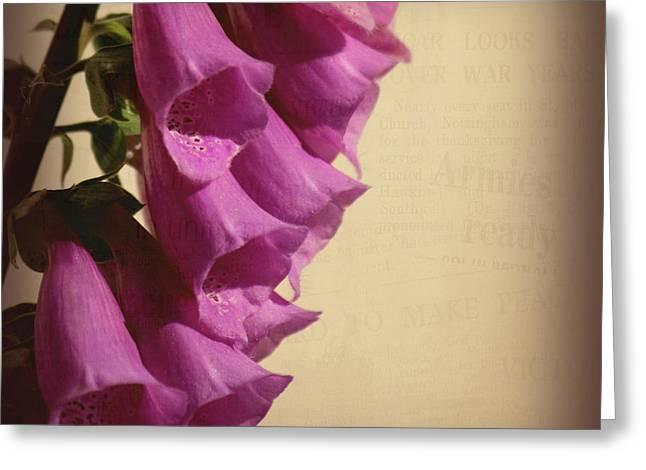 War Torn Greeting Card by Bonnie Bruno