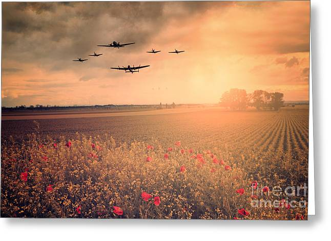 Warbird Fly Past Greeting Card by J Biggadike