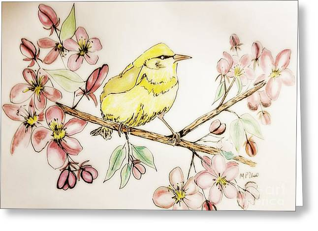 Warbler In Apple Blossoms Greeting Card by Maria Urso