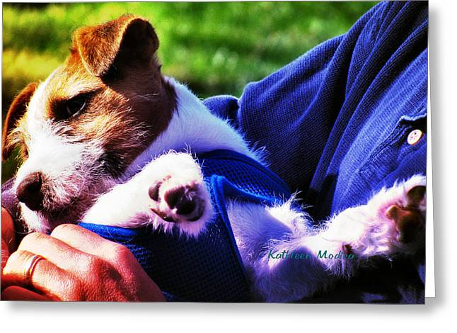Greeting Card featuring the photograph Warm Embrace by KLM Kathel