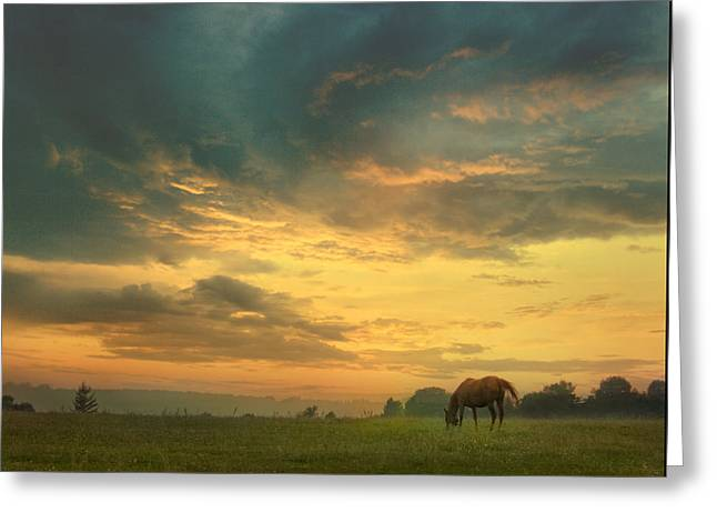Warm Summer Sunset. Greeting Card by Valeriy Bekeshko