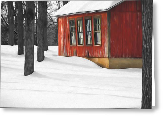 Warmth In The Cold Greeting Card by Steven Michael