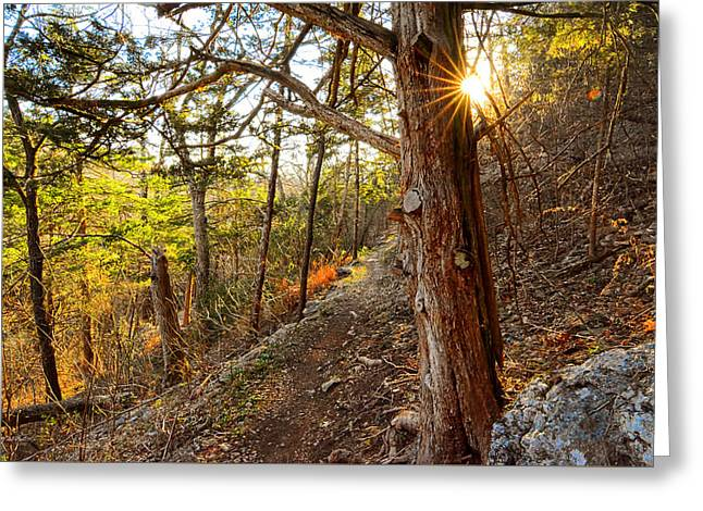 Warmth Of Comfort - Blowing Springs Trail In Bella Vista Arkansas Greeting Card by Lourry Legarde