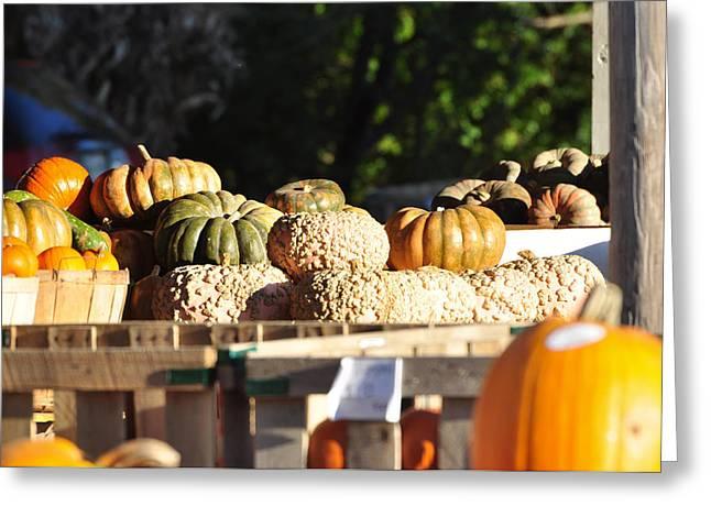 Wart Pumpkins Greeting Card by Jan Amiss Photography