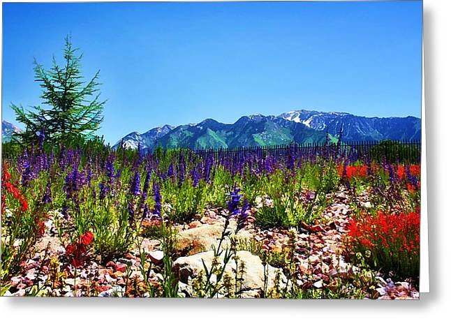 Snow Capped Greeting Cards - Wasatch Mountains In Spring Greeting Card by Tracie Kaska