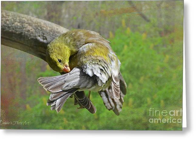 Wash Day Goldfinch With Texture Greeting Card
