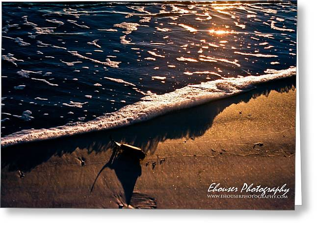 Washed Ashore Greeting Card by Everett Houser