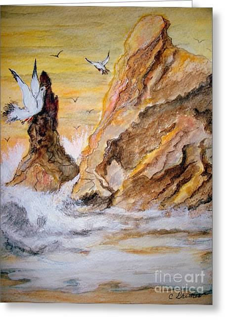Washed Rocks Greeting Card by Carol Grimes