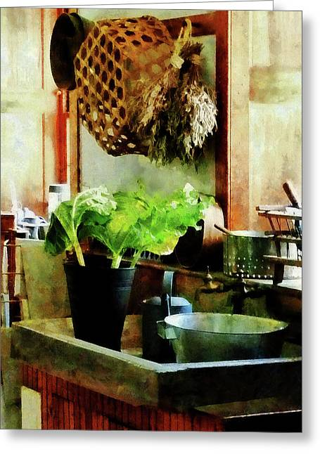 Washing Garden Greens Greeting Card by Susan Savad
