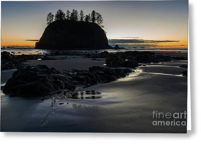 Washington Coastal Serenity At Dusk Greeting Card by Mike Reid