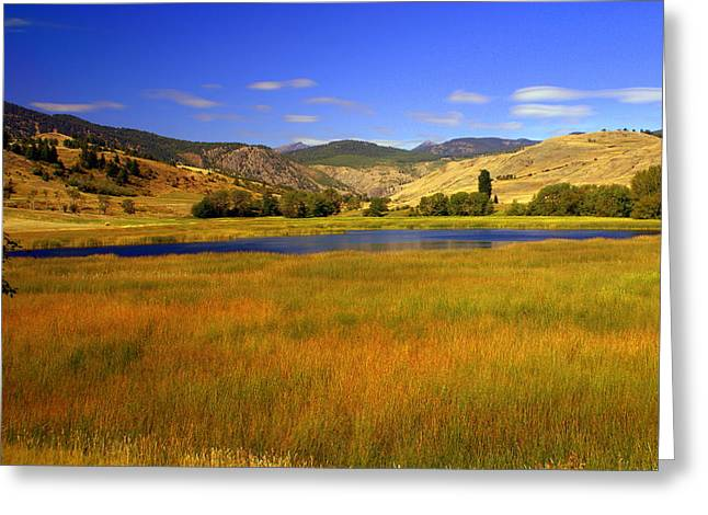 Marty Koch Greeting Cards - Washington Landscape Greeting Card by Marty Koch