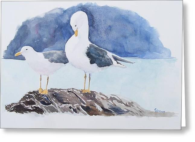 Washington - Two Gulls Greeting Card by Christine Lathrop