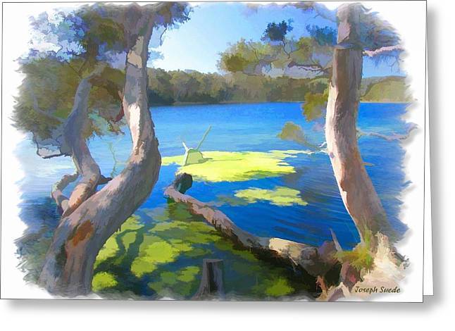 Wat-0002 Avoca Estuary Greeting Card by Digital Oil