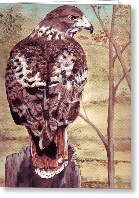 Watch Hawk Greeting Card by Debra Sandstrom