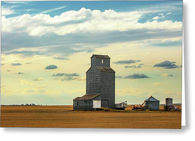 Watching O'er The Plains Greeting Card by Todd Klassy