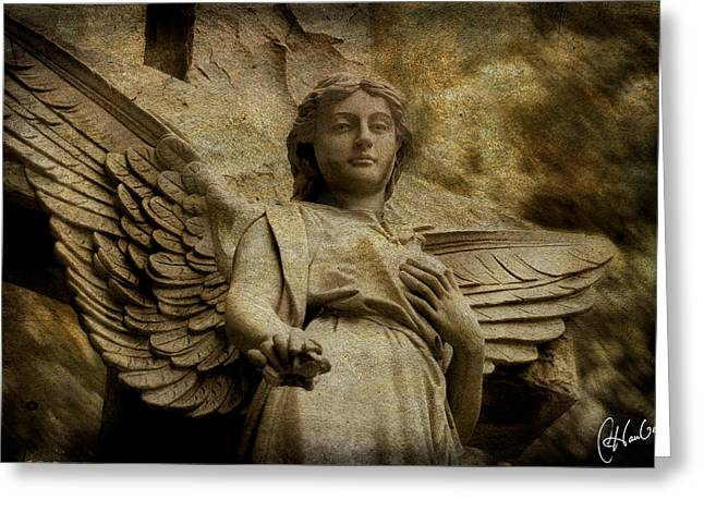 Watching Over Us Greeting Card by Christine Hauber