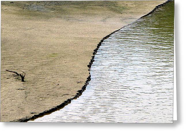 Water And Sand Greeting Card by Dottie Dees