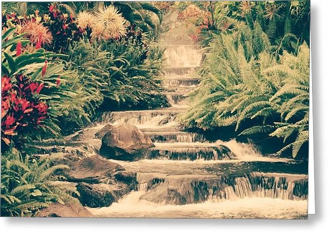 Greeting Card featuring the photograph Water Creek by Sheila Mcdonald