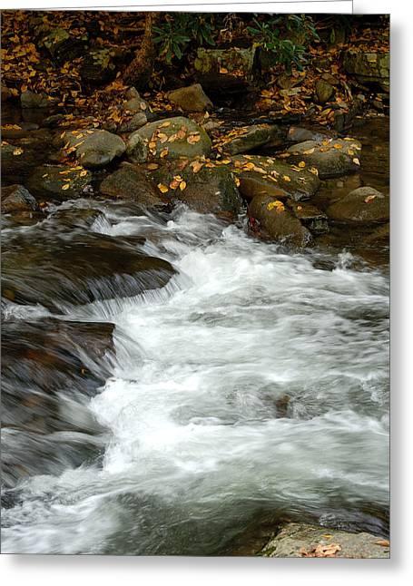 Water-fall Greeting Card