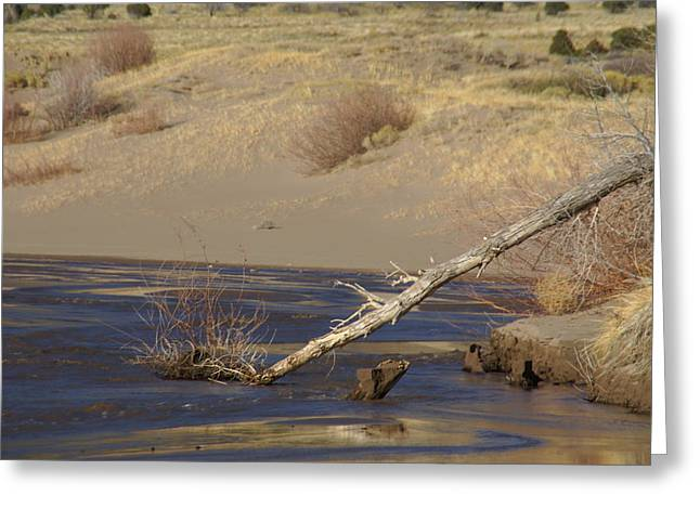 Water Flow In The Great Sand Dunes Greeting Card
