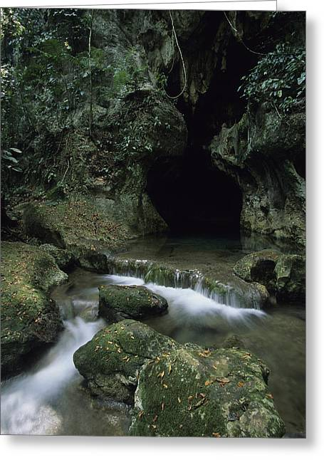 Ethnic And Tribal Peoples Greeting Cards - Water Flows From The Mouth Greeting Card by Stephen Alvarez
