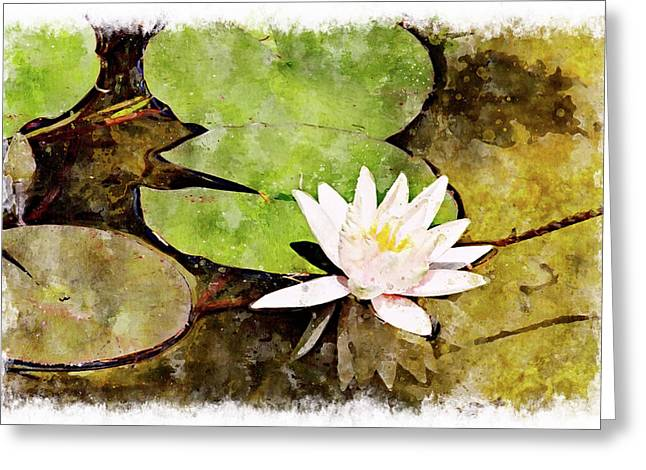 Water Hyacinth Two Wc Greeting Card by Peter J Sucy
