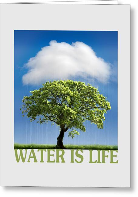 Water Is Life Greeting Card by Mal Bray
