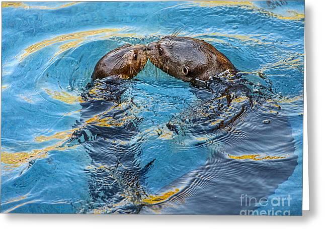 Water Kisses Greeting Card by Jamie Pham