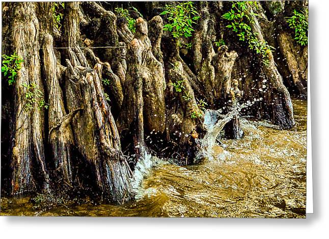 Water Lapping At The Knees Greeting Card by Geoff Mckay