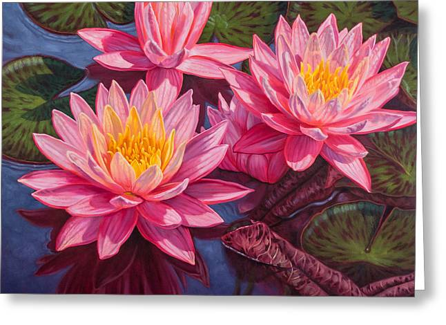 Water Lilies 3 - Sunfire Greeting Card by Fiona Craig