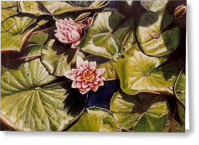 Water Lilies On The Ringdijk Greeting Card by Constance Drescher