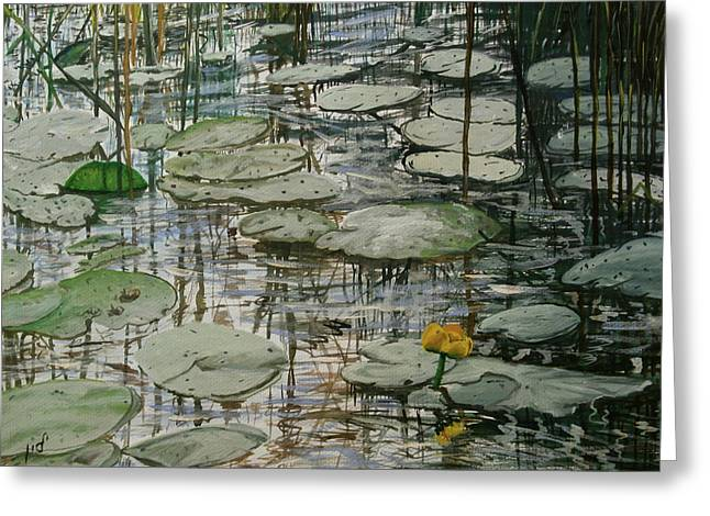 Water Lilly Greeting Card by Maria Woithofer