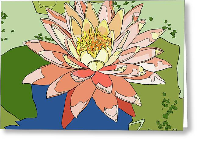 Water Lily And Duck Weed Greeting Card